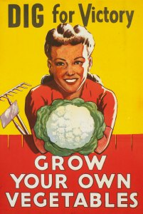 Dig For Victory - Grow You Own Vegetables